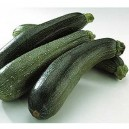Courgette verte longue origine France